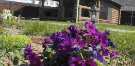 Отдых в агроусадьбе «Лолуа» фото