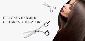 Стрижка от парикмахерской «Альбинакрок» фото