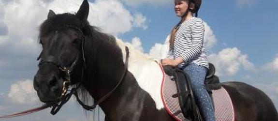 Частная конюшня Частная конюшня «Табун» фото