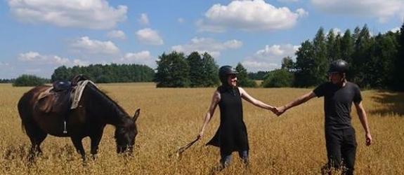 Фермерское хозяйство АВ Спортивные лошади фото