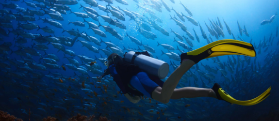 Дайвинг-клуб I-Diver фото