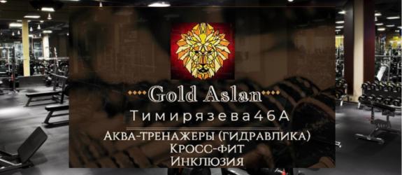 Фитнес-центр Gold Aslan фото