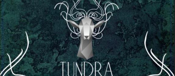 Мастерская красоты Tundra фото